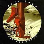 The Red Shoes by Kate Bush
